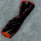Νήμα 7.000 ετών σε ελληνικό σπήλαιο