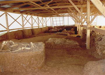Ευρήματα ρωμαϊκής εποχής από τάφους 16 αλόγων στο Λιθοχώρι Καβάλας