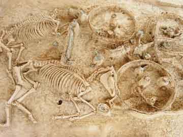 Ευρήματα από τις ανασκαφές της Μικρής Δοξιπάρας