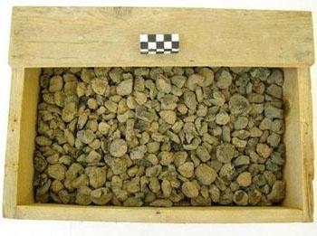Απανθρακωμένοι καρποί σύκων από πιθάρια στον οικισμό του Κακοβάτου.