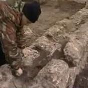 Αρχαία ελληνική πόλη αποκαλύπτεται στη Ρωσία