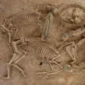 Αναδεικνύεται ο ταφικός τύμβος της μικρής Δοξιπάρας-Ζώνης