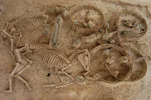 Μία από τις άμαξες που βρέθηκαν στον τύμβο της Μικρής Δοξιπάρας-Ζώνης. Τα άλογα βρίσκονται στο ένα άκρο του λάκκου με τα κεφάλια προς την άμαξα, ενώ δίπλα τους έχει ταφεί και ένας σκύλος.