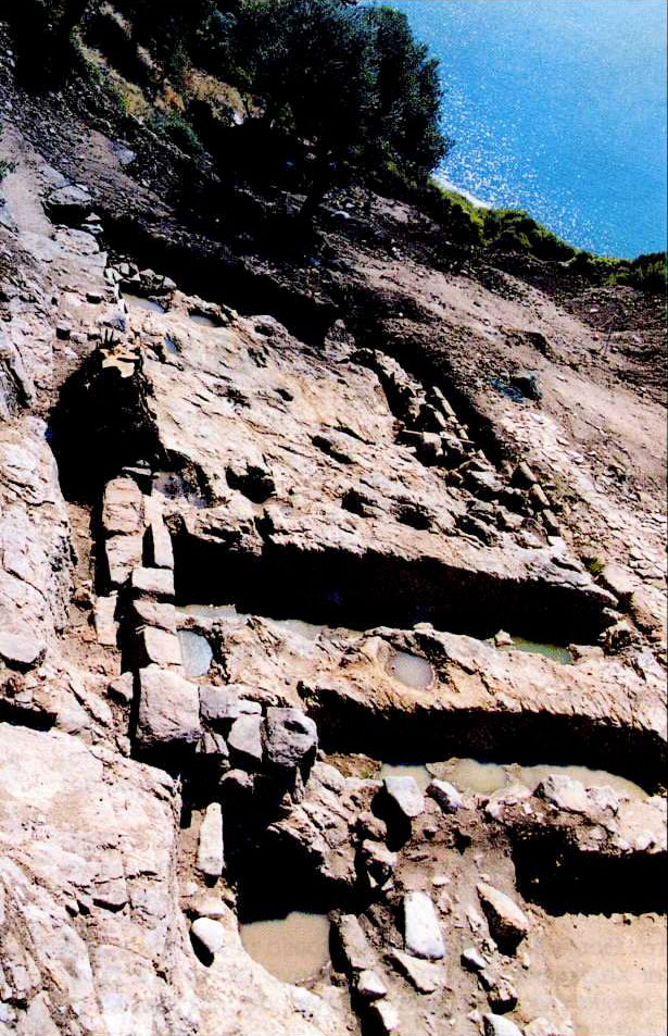 ραδιοανθρακόνημα που χρονολογείται τέχνη σπήλαιο 18 χρονολογίων ενός 35 ετών