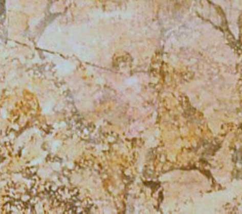 Εικ. 7α. Ο Αλέξανδρος ζωγραφισμένος στη ζωφόρο του Τάφου του Φιλίππου στη Βεργίνα.