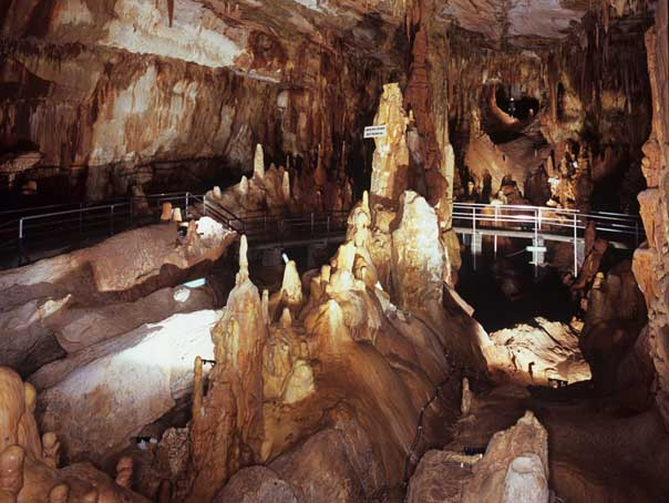 Το Σπήλαιο των Πετραλώνων βρίσκεται στους δυτικούς πρόποδες του ασβεστολιθικού όρους «Κατσίκα».