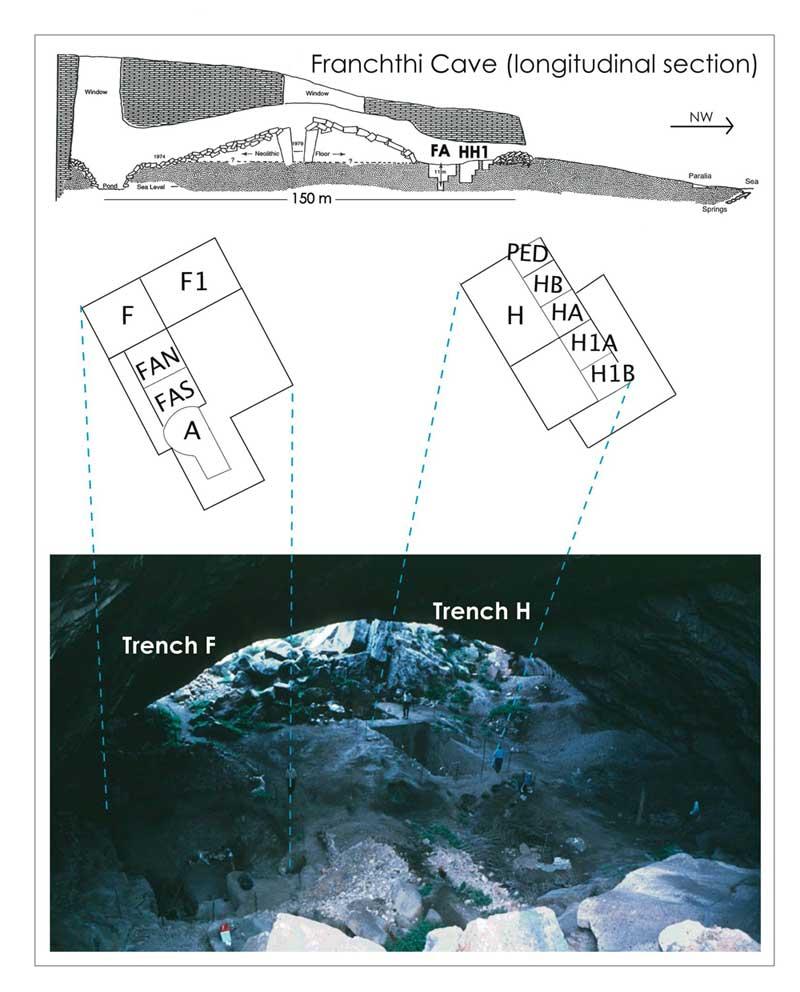 3. Τομή του σπηλαίου και κάτοψη των σκαμμάτων. (Copyright K. Douka & C. Perles)