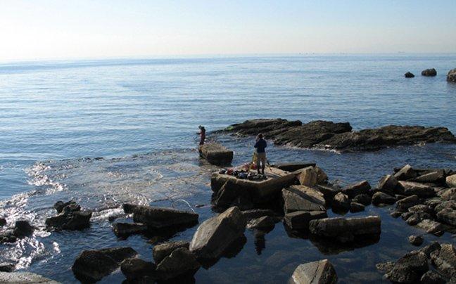 Από το 2002 Δανοί αρχαιολόγοι ερευνούν την περιοχή της μαρίνας Ζέας.