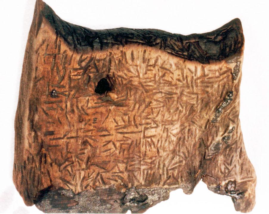 Εικ. 30. H ξύλινη πινακίδα του Δισπηλιού με τα εγχάρακτα σημεία που θυμίζουν τα σημεία του πολιτισμού της Vinča ή της Γραμμικής Α. Έπεσε θύμα ανόητων «αποκρυπτογραφιστών» και σχολιάσθηκε με κωμικοτραγικό τρόπο.