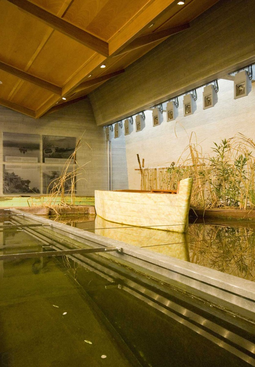 Μουσείο Περιβάλλοντος Στυμφαλίας, Τομή Λίμνης. Οι επισκέπτες έχουν τη δυνατότητα να καθίσουν στη βάρκα και να δουν από κοντά τη λίμνη και τη βλάστηση της παραλίμνιας περιοχής. (© Koττάς Θανάσης – Φωτογραφικό Αρχείο ΠΙΟΠ)