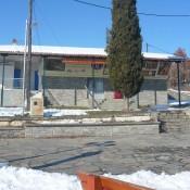 Σύγχρονο Κέντρο Παλαιοντολογίας στις Μηλιές Γρεβενών