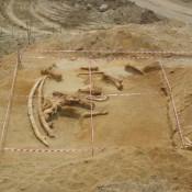 Προϊστορικά ευρήματα στην Πλατανιά Δράμας