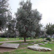 Στο δρόμο της υλοποίησης το ψηφιακό μουσείο της Ακαδημίας Πλάτωνος