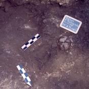 Η αρχαιολογική έρευνα στην κοιλάδα του μέσου ρου του Αλιάκμονα (Μέρος Δ′)