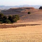 Προϊστορικά ευρήματα στη Μαγούλα Ζερέλια