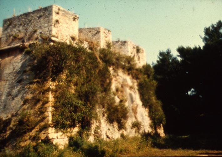 Εικ. 21β. Χαρακτηριστικές εικόνες αυτοφυούς βλάστησης σε εξωτερικές πλευρές των προμαχώνων της ακρόπολης του φρουρίου.