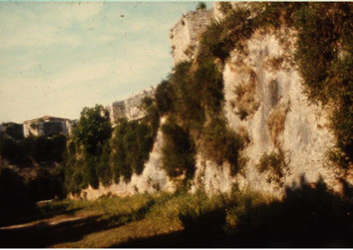 Εικ. 21γ. Χαρακτηριστικές εικόνες αυτοφυούς βλάστησης σε εξωτερικές πλευρές των προμαχώνων της ακρόπολης του φρουρίου.