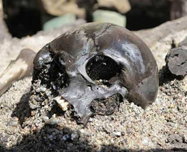 Κρανίο που βρέθηκε στον τυρφώνα του Άλκεν Ένγκε.