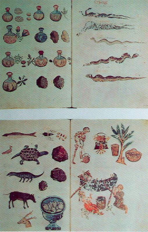 Εικ. 7. Φαρμακευτικά φιαλίδια, ερπετά και ζώα από τα οποία αντλούσαν πρώτες ύλες για ιατρικές συνταγές. Κάτω δεξιά: Σκηνές έκχυσης και εκχύλισης φυτικών βοτάνων. 15ος αι. Μικρογραφίες σε κώδικα του Διοσκουρίδη.