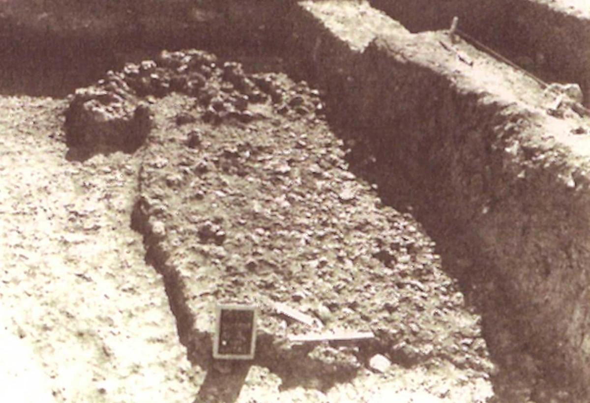 Εικ. 5. Δάπεδο καλύβας της Χαλκολιθικής περιόδου στα Δολιανά Ιωαννίνων. (Πηγή: Α. Ντούζουγλη / Κ. Ζάχος)