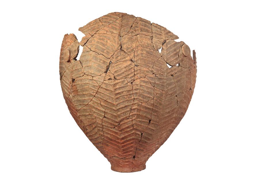 Εικ. 7. Κερύνεια: Πίθος με ανάγλυφη διακόσμηση τύπου ιχθυάκανθας.