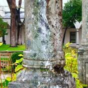 Ο περιζήτητος και σπάνιος «πράσινος θεσσαλικός λίθος»