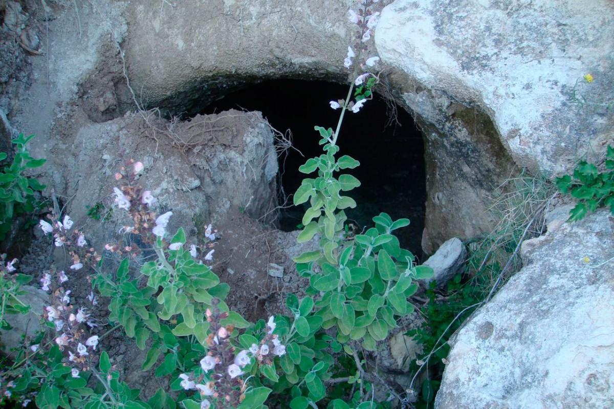 Εικ. 10. Σπηλαιώδης λαξευτός τάφος στα «Περισσάκια» (φωτ. Γ. Κανακάκης).