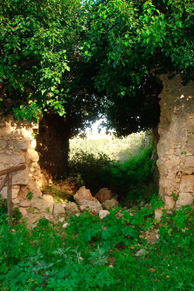 Εικ. 22. Η πόρτα στο μοναστήρι «του Μερκούρη» έπειτα από την απομάκρυνση του λίθινου θυρώματός της (φωτ. Μ. Μιλιδάκης).