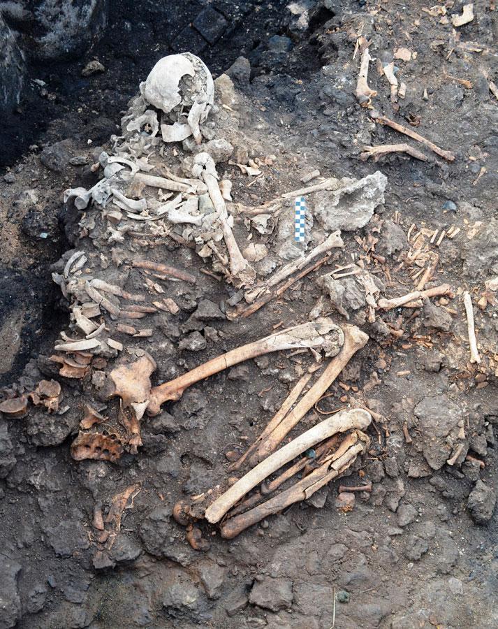 Σκελετός που εντοπίστηκε στο εσωτερικό του υπόστυλου τάφου στις Αιγές (φωτ. ΙΖ' ΕΠΚΑ).