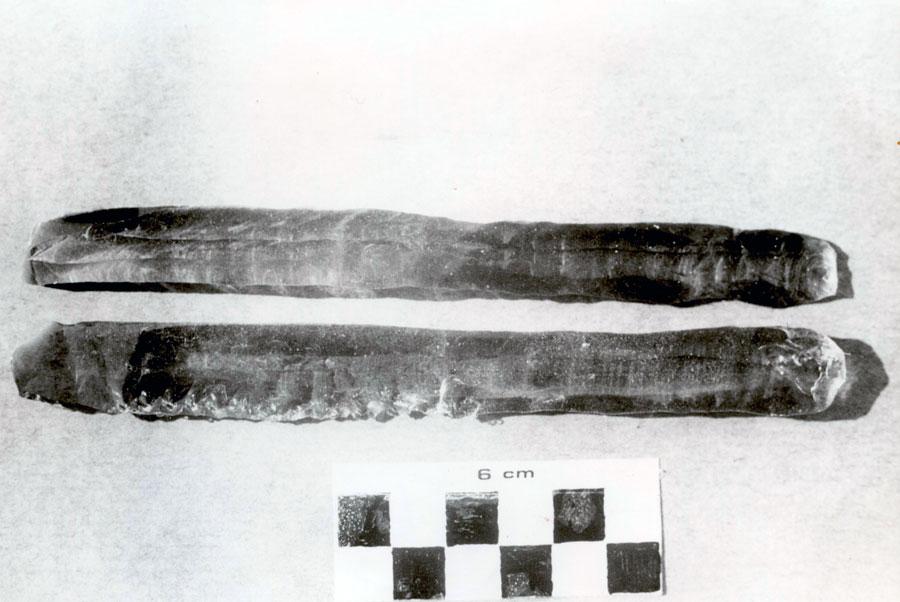 Εικ. 24. Μακριές λεπίδες από γυαλί αποσπασμένες με πίεση από τον P.-J. Texier στη Valbonne το 1993.