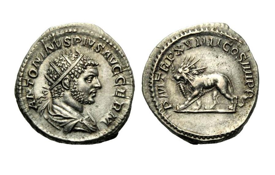 Εικ. 7. Καρακάλλας (198-217). Αντωνινιανός, 216 μ.Χ., το νέο αργυρό νόμισμα που εισήγαγε ο Καρακάλλας το 215 και ισούτο με 2 ασημένια δηνάρια αλλά στην πραγματικότητα άξιζε 1,5 δηνάριο. Βάρος, 5,46 γραμμ. ArtCoins Roma 6, 10.12.2012, 1046.