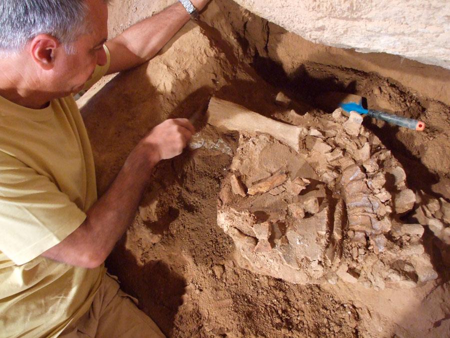 Από τις παλαιοντολογικές έρευνες στο σπήλαιο Χαρκαδιό της Τήλου όπου έχει βρεθεί πληθώρα οστών των ελεφάντων νάνων (φωτ.: Γεώργιος Θεοδώρου).