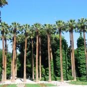 Το Μουσείο Μπενάκη βγαίνει στον Κήπο!