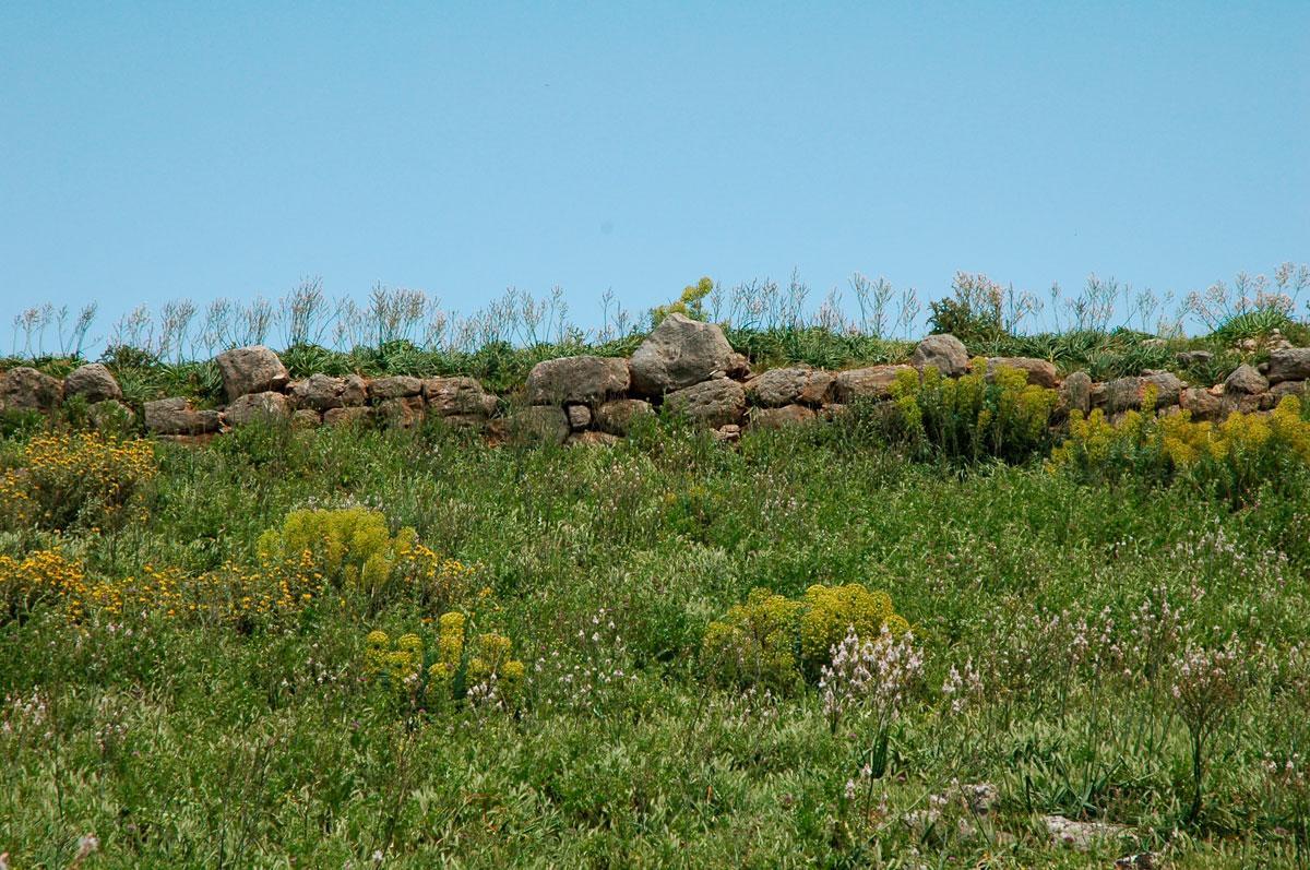 Εικ. 3. Οχυρωματικά κατάλοιπα στο λόφο της αρχαίας πόλης (προσωπικό αρχείο).