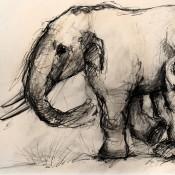 Ευαγγελία Τσουκαλά και Ντικ Μο: βραβεύονται για τα παλαιοντολογικά τους ευρήματα