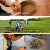 Εκπαιδευτικές δράσεις 2013 στον Νεολιθικό Οικισμό Αυγής