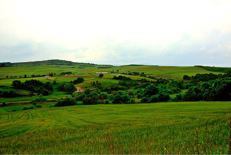 Εικ. 6. Ο νεολιθικός οικισμός Αυγής και το λοφώδες περιβάλλον του (από Α-ΝΑ).