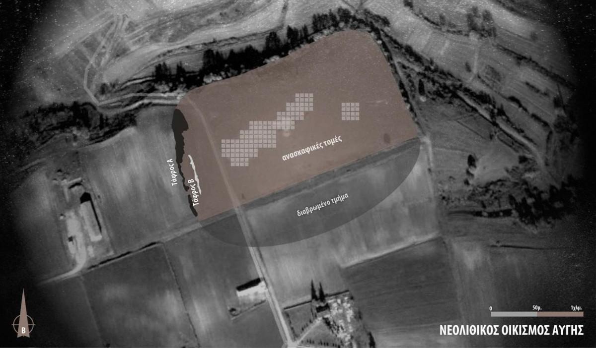 Εικ. 7. Η έκταση του νεολιθικού οικισμού Αυγής με τον κάνναβο των ανασκαφικών τομών, το νότιο διαβρωμένο τμήμα του και τις Τάφρους Α και Β στο δυτικό τμήμα του.