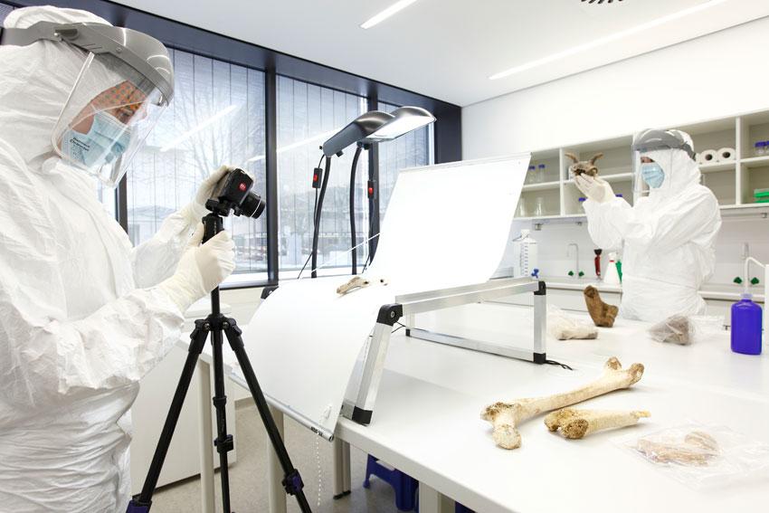 Παλαιογενετική έρευνα στο εργαστήριο του Πανεπιστημίου του Μάιντς (φωτ. Thomas Hartmann).