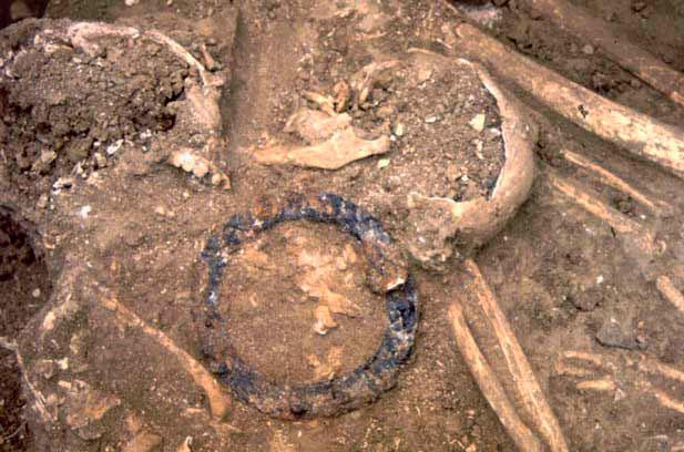 Εικ. 2. Σκελετός ενήλικου ανδρός με περιλαίμιο από την ομαδική ταφή της Πύδνας. (http://antiquity.ac.uk/projgall/triantaphyllou/)