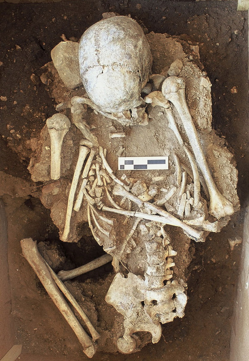 Εικ. 34. Κέντρο Θεόπετρας. Το έκθεμα της μεσολιθικής ταφής.