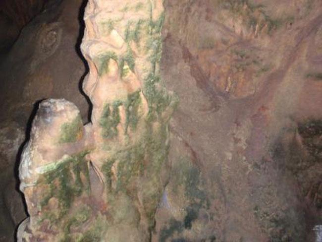 Εικ. 39. Σπήλαιο Κουτούκι. Ο λιθωματικός διάκοσμος του σπηλαίου πριν τον καθαρισμό της χλωρίδας.