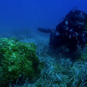 Έξι αρχαία ναυάγια εντοπίστηκαν στη Δυτική Κρήτη