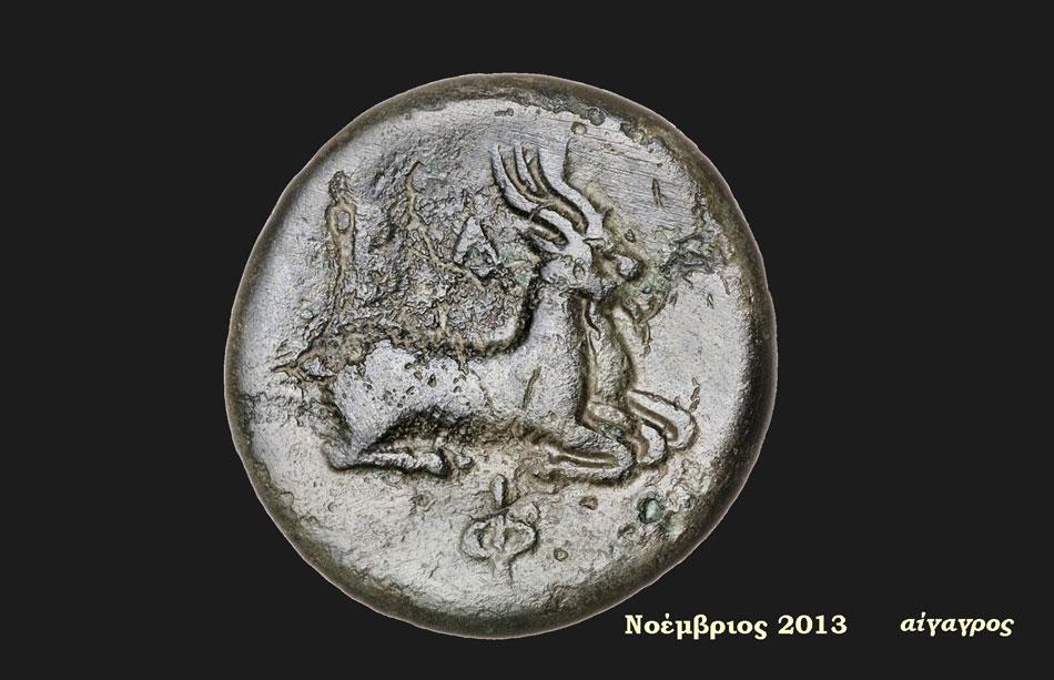 Οπισθότυπος χάλκινου νομίσματος Φιλίππου Ε΄: Ζεύγος αιγάγρων, 186–183/2 π.Χ., Ελέα. Αρχαιολογικό Μουσείο Ηγουμενίτσας (Αίθουσα 2 – Ενότητα IΙΙ).
