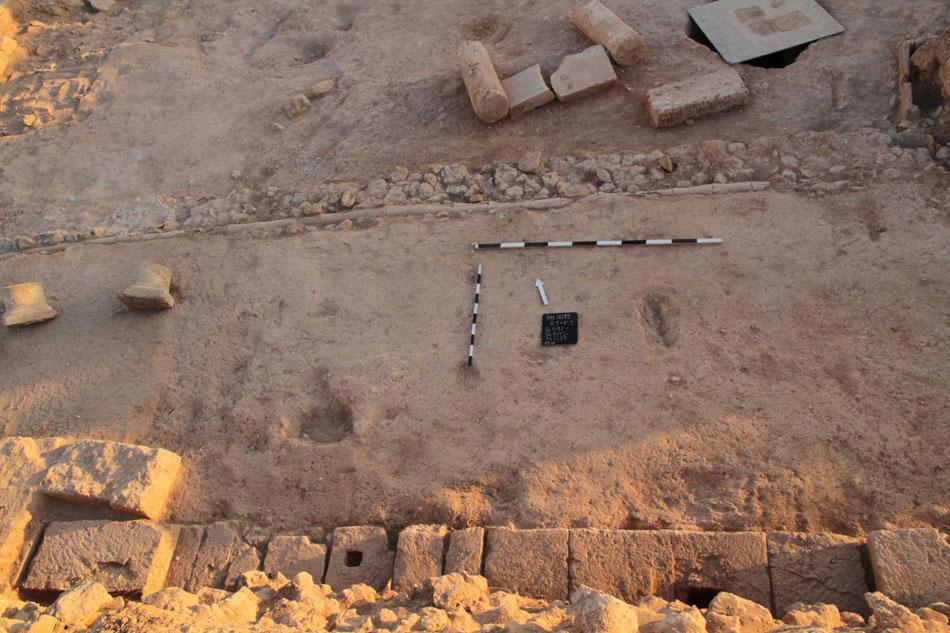 Η ανασκαφή της Πολωνικής Αποστολής στην Κάτω Πάφο επικεντρώθηκε στη νότια πλευρά και στη νότια στοά του αιθρίου της λεγόμενης Ελληνιστικής Οικίας (φωτ. Τμήμα Αρχαιοτήτων Κύπρου).