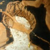 Αναλύσεις χρωστικών στα αγγεία της κατηγορίας «Κερτς»