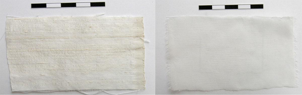 Εικ. 4. «Μάρτυρες» άγριας μετάξας (αριστερά) και οργάντζας (δεξιά).