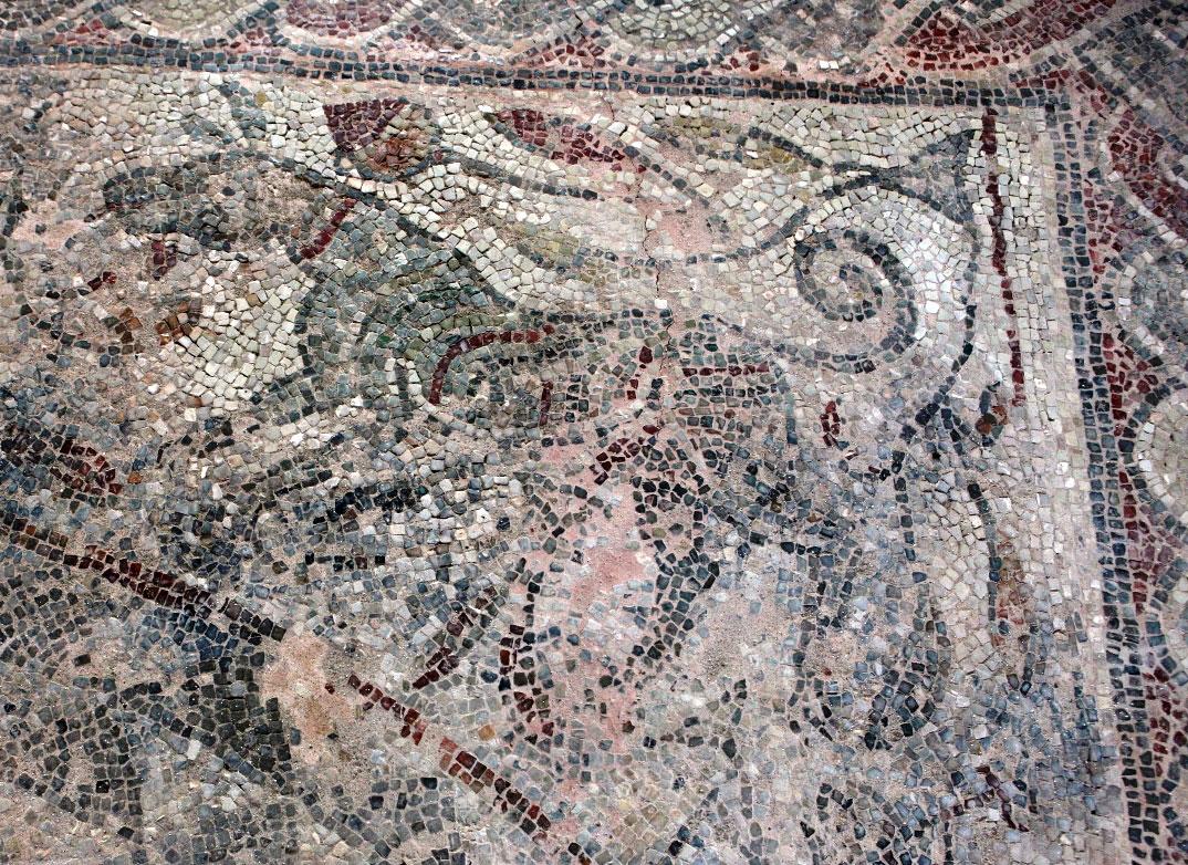 Ψηφιδωτό δάπεδο στο ναό του Αγίου Λεωνίδη, στο Κλαυσί Ευρυτανίας (φωτ. 24η ΕΒΑ).
