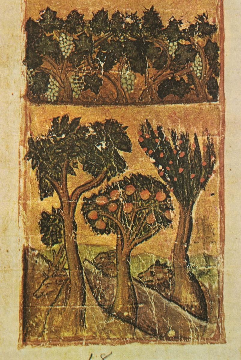 Εικ. 14. Οπωροφόρα δέντρα, αμπέλια και διάφορα άγρια ζώα (μικρογραφία), «Οι Θησαυροί του Αγίου Όρους», τόμος Β΄, σ. 225, εικ. 347.