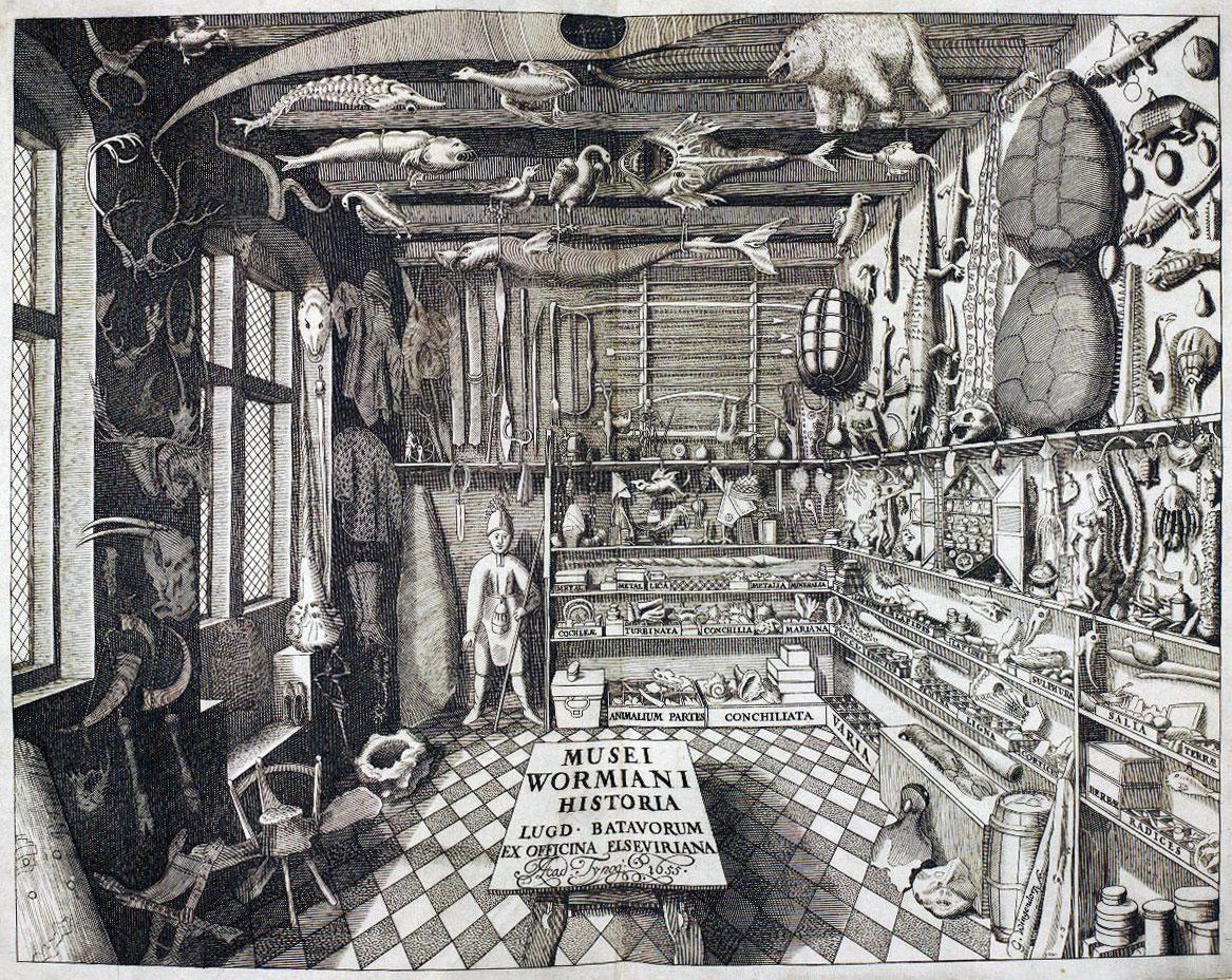"""Εικ. 1. """"Musei Wormiani Historia"""", απεικονίζοντας τη συλλογή του Ole Worm, Copyright: Wikipedia Commons."""